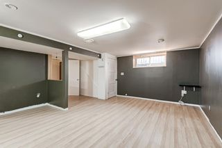 Photo 11: 452 Malvern Close NE in Calgary: Marlborough Park Detached for sale : MLS®# A1111639