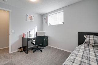 Photo 32: 19 Chapman Close SE in Calgary: Chaparral Detached for sale : MLS®# A1053108