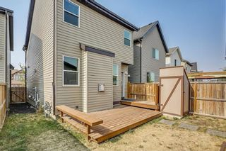 Photo 36: 1303 NEW BRIGHTON Drive SE in Calgary: New Brighton House for sale : MLS®# C4137710