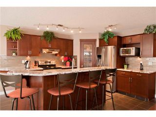 Photo 8: 48 COUGARSTONE Court SW in Calgary: Cougar Ridge House for sale : MLS®# C4045394
