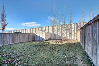Photo 34: 167 Covemeadow Crescent NE in Calgary: Coventry Hills Detached for sale : MLS®# A1045782