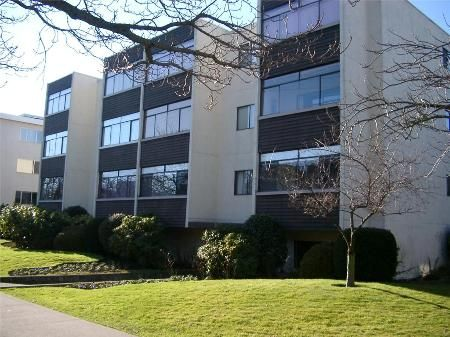 Photo 1: Photos: 203-924 Cook St in Victoria: Residential for sale (Fairfield)  : MLS®# 257887