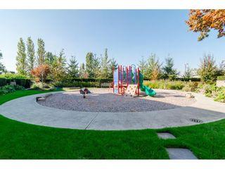 """Photo 16: 215 21009 56 Avenue in Langley: Salmon River Condo for sale in """"Cornerstone"""" : MLS®# R2414162"""