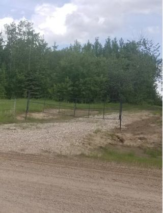Photo 3: 47411 RR 31: Rural Leduc County Rural Land/Vacant Lot for sale : MLS®# E4246478