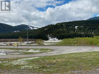Photo 1: 8905 20 Avenue in Coleman: Vacant Land for sale : MLS®# A1111990