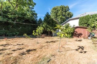 Photo 4: 1174 Craigflower Rd in VICTORIA: Es Kinsmen Park Full Duplex for sale (Esquimalt)  : MLS®# 769477
