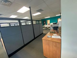 Photo 6: 227 1175 Cook St in Victoria: Vi Downtown Office for lease : MLS®# 859814