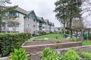 Photo 19: 122 290 Island Hwy in VICTORIA: VR View Royal Condo for sale (View Royal)  : MLS®# 813402