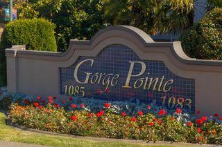 Photo 15: 212 1085 Tillicum Rd in Esquimalt: Es Kinsmen Park Condo for sale : MLS®# 834673
