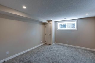 Photo 31: 1028 39 Avenue NW: Calgary Semi Detached for sale : MLS®# A1131475