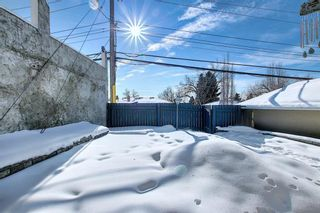 Photo 42: 63 Cromwell Avenue NW in Calgary: Collingwood Detached for sale : MLS®# A1060725