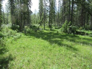 Photo 5: 70041 Highway 591: Rural Clearwater County Detached for sale : MLS®# C4305359