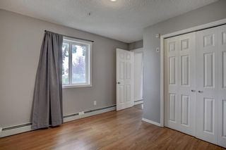 Photo 11: 144 1717 60 Street SE in Calgary: Red Carpet Apartment for sale : MLS®# A1131300