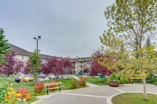 Photo 28: 107 3000 Citadel Meadow Point NW in Calgary: Citadel Apartment for sale : MLS®# A1070603