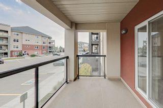 Photo 27: 256 7805 71 Street in Edmonton: Zone 17 Condo for sale : MLS®# E4266039