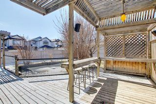 Photo 38: 165 Kincora Cove NW in Calgary: Kincora Detached for sale : MLS®# A1097594