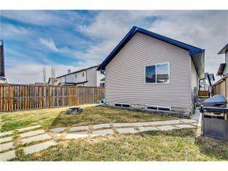 Photo 30: Silverado Home Sold in 25 Days by Steven Hill - Calgary Realtor