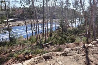 Photo 1: Lot Highway 3 in Summerville Centre: Vacant Land for sale : MLS®# 202109429