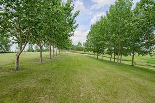 Photo 3: 10A RAINBOW Boulevard in Rural Rocky View County: Rural Rocky View MD Land for sale : MLS®# A1014377