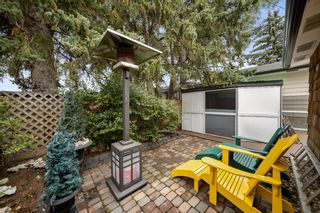 Photo 10: 3304 Barr Road NW in Calgary: Brentwood Detached for sale : MLS®# A1146475