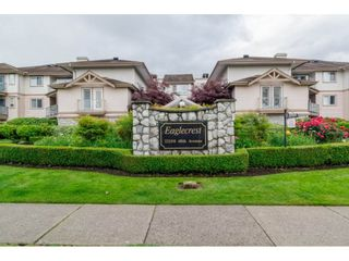 "Photo 2: 306 22150 48TH Avenue in Langley: Murrayville Condo for sale in ""EAGLE CREST"" : MLS®# R2182501"