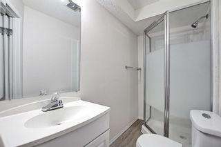 Photo 48: 22 Martin Crossing Way NE in Calgary: Martindale Detached for sale : MLS®# A1141099