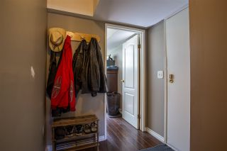 Photo 11: 7920 OSPREY STREET in Mission: Mission BC House for sale : MLS®# R2482190