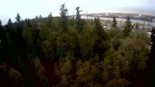 "Photo 17: 11270 96 Avenue in Delta: Annieville Land for sale in ""ANNIEVILLE"" (N. Delta)  : MLS®# R2526728"