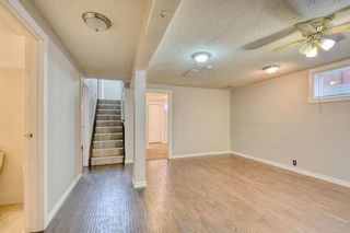 Photo 27: 355 Whitman Place NE in Calgary: Whitehorn Detached for sale : MLS®# A1046651