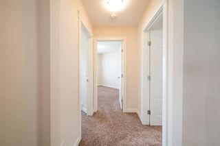 Photo 16: 31 SKYVIEW SHORES Link in Calgary: Skyview Ranch Detached for sale : MLS®# A1130937