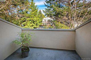 Photo 18: 2 909 Admirals Rd in VICTORIA: Es Esquimalt Row/Townhouse for sale (Esquimalt)  : MLS®# 804289