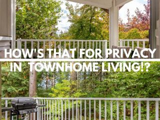 """Photo 1: 93 12711 64 Avenue in Surrey: West Newton Townhouse for sale in """"Palette On The Park"""" : MLS®# R2342430"""