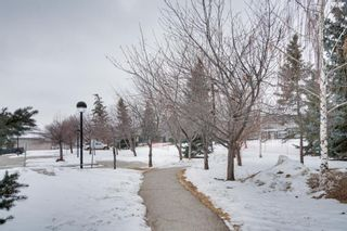 Photo 47: 7 1302 Russell Road NE in Calgary: Renfrew Row/Townhouse for sale : MLS®# A1072512
