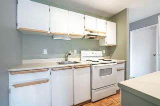 Photo 4: 7 4328 75 Street NW in Calgary: Bowness Apartment for sale : MLS®# A1094944