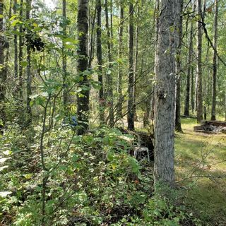Photo 10: #408 57312 Township Range Rd 25: Rural Barrhead County Rural Land/Vacant Lot for sale : MLS®# E4261595