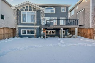 Photo 44: 68 Rainbow Falls Boulevard: Chestermere Detached for sale : MLS®# A1060904