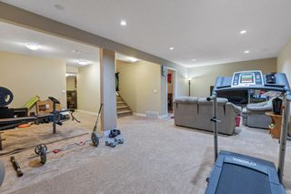 Photo 31: 101 COPPERSTONE Close SE in Calgary: Copperfield Detached for sale : MLS®# A1076956