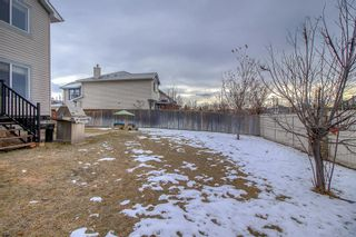 Photo 42: 16202 Everstone Road SW in Calgary: Evergreen Detached for sale : MLS®# A1050589
