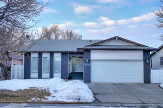 Photo 1: 328 Templeton Circle NE in Calgary: Temple Detached for sale : MLS®# A1074791