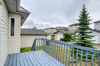 Photo 10: 379 Coventry Road NE in Calgary: Coventry Hills Detached for sale : MLS®# A1139977