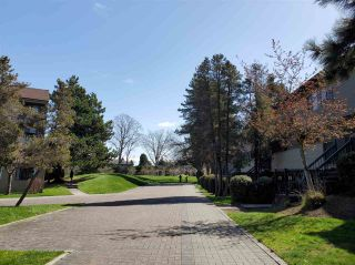 """Photo 16: 210 8140 COLONIAL Drive in Richmond: Boyd Park Townhouse for sale in """"C4"""" : MLS®# R2560004"""