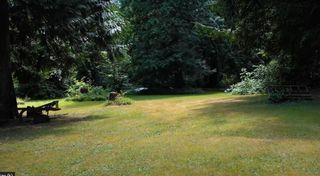 Photo 9: 27462 104 Avenue in Maple Ridge: Whonnock House for sale : MLS®# R2604488