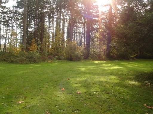 Main Photo: 1577 DINGWALL ROAD: Land Only for sale : MLS®# 245102