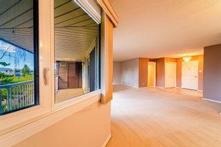 Photo 7: 409 14810 51 Avenue in Edmonton: Zone 14 Condo for sale : MLS®# E4263309