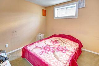 Photo 40: 6279 SADDLEHORN Drive NE in Calgary: Saddle Ridge Detached for sale : MLS®# C4197699