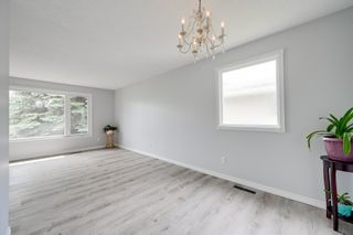 Photo 12: 10916 36A Avenue in Edmonton: Zone 16 House for sale : MLS®# E4246893