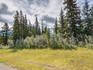 Photo 6: 7 34364 RANGE ROAD 42: Rural Mountain View County Land for sale : MLS®# A1017817