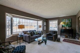 Photo 13: 436 38 Street SW in Calgary: Spruce Cliff Detached for sale : MLS®# A1091044
