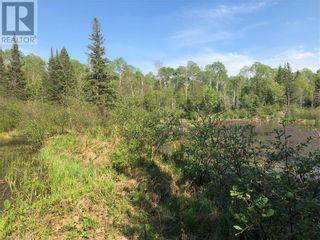 Photo 22: N/A RANEY Road E in Sundridge: Vacant Land for sale : MLS®# 40129602