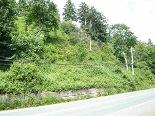 Photo 3: 47165 YALE Road in Chilliwack: Chilliwack E Young-Yale Land for sale : MLS®# R2459551
